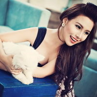 Кошачьи болезни: как избежать заражения